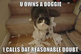 Lawyer Cat Meme - lolcats lawyer lol at funny cat memes funny cat pictures with