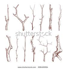 sketch wood twigs broken tree branches stock illustration