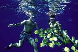 North Dakota snorkeling images Kauai snorkeling na pali coast things to do in hawaii jpg