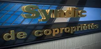 chambre syndicale des syndics de copropriété la responsabilité des syndics de copropriété attention la loi est