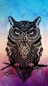 the 25 best owl wallpaper ideas on pinterest owl wallpaper