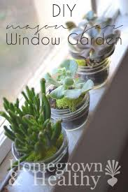 best 25 mason jar succulents ideas on pinterest mason jar