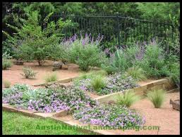 best texas gardening and landscape design blogs