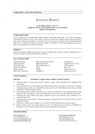 100 resume career profile examples cheap reflective essay