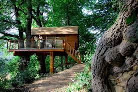 Whimsical House Plans by 7 Whimsical Tree House Escapes We Simply Adore Tiny House For Us