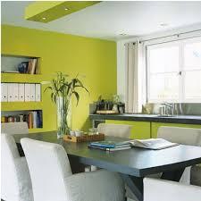 cuisine jaune et verte association couleur avec le vert dans salon chambre cuisine