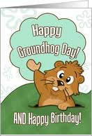 groundhog day cards birthday on groundhogs day cards from greeting card universe