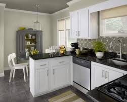 kitchen wall color for kitchen with grey cabinets what color to