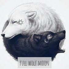 wolf moon emily silva