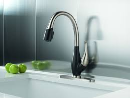 Kitchen Pullout Faucet by Bronze One Handle Kitchen Faucet Wide Spread Two Pull Down Spray