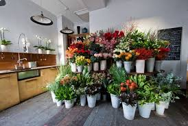 flower store working designer wednesday botanical brouhaha