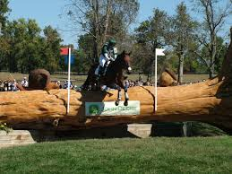 free images tree sport jump jumping rider equine outdoors