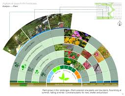native and adapted landscape plants garden design garden design with native and adapted landscape