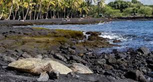 black sand beach big island punaluu black sand beach park review fodor s travel