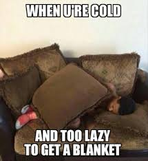 Lazy People Memes - admit it you know these are all true 20 pics giggles