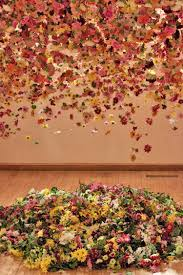 Photos Of Flowers 25 Blossoming Pieces Of Flower Art Made With Real Blooms