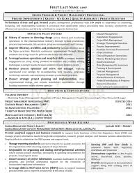 Resume Project Executive Career Coaching Resume Writing Services New York