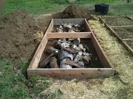 Best Soil For Vegetable Garden In Raised Bed by Cinderblock Versus Wood For Raised Beds Gardening