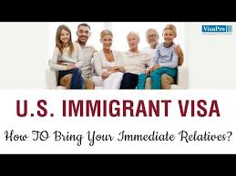 Family Immigration Expert Opinion Immigration Consultation Get Advice From Experts Who