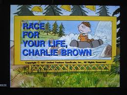 charlie brown thanksgiving dvd bon voyage charlie brown and race for your life charlie brown