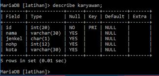 membuat database lewat cmd membuat database mysql dengan cmd msi situs belajar online