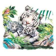 and cubs white tiger family in jungle white t shirt 9 95