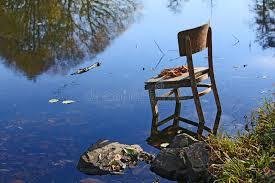 imágenes asombrosas naturaleza cosas asombrosas alrededor de nosotros en naturaleza sillas
