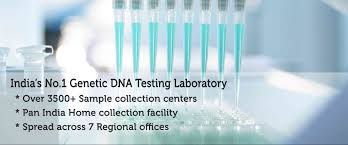 india u0027s no1 genetic dna testing laboratory delhi mumbai kolkata