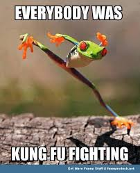 Funny Frog Meme - everybody was kung fu fighting funny frog meme