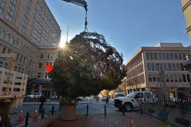lancaster city seeking christmas tree donation local news