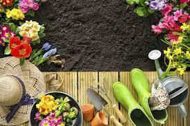 gardening archives petal talk