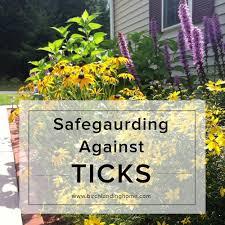 safeguarding against ticks u2014blog birch landing home