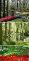 10 most breathtaking gardens in the world great gardens amazing