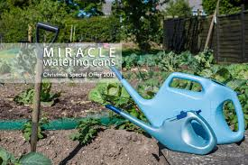 watering can christmas special offer 2015 nucan u0026 pinpoint