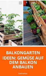 krã uter fã r den balkon 44 best images about garten und balkon on save the