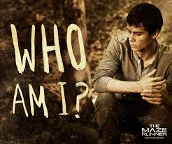 the maze runner film the maze runner film images movie quotes hd wallpaper and background