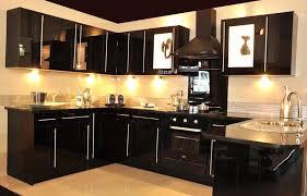 Black Glass Cabinet Doors Black Glass Kitchen Cabinets Petersonfs Me