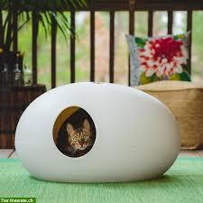 designer katzentoilette designer katzentoilette zu verkaufen tierinserat 294797