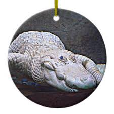 white alligator ornaments keepsake ornaments zazzle