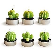 amazon com ornerx decorative cactus candles tea light candles 6