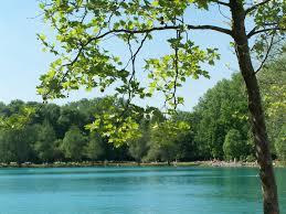 Baden Im Rhein Schwimmen Baden Kaiserstuhl
