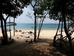 tree house bungalow book tree house bungalow in sihanoukville