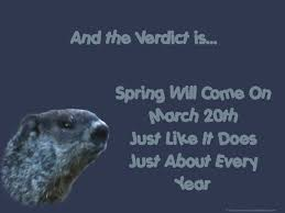 groundhog pictures free groundhog day wallpaper background for