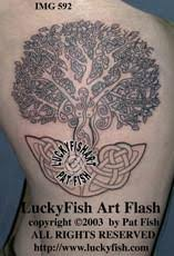 celtic tree of tattoos luckyfish