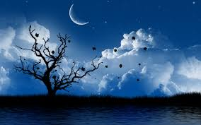 beautiful nature night illustrations clip art pinterest