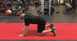 Lower Back Pain Bench Press 5 Exercises For Lower Back Pain