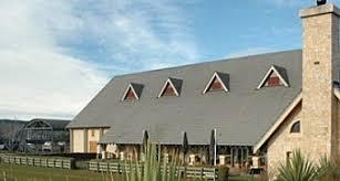 Convention Bureau Christchurch Canterbury 9f634ceba24a40369c7769a66115c026 Jpg
