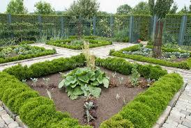 boxwood border around vegetable garden plant u0026 flower stock