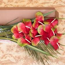 flower delivery honolulu flower delivery in honolulu watanabe floral inc