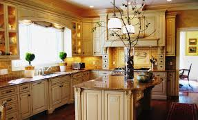 Kitchen Themes Decorating Ideas Inspiring Kitchen Theme Ideas For Apartments Pictures Best Ideas